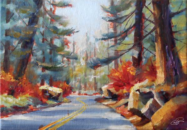 The McKenzie Pass by Pat Cross
