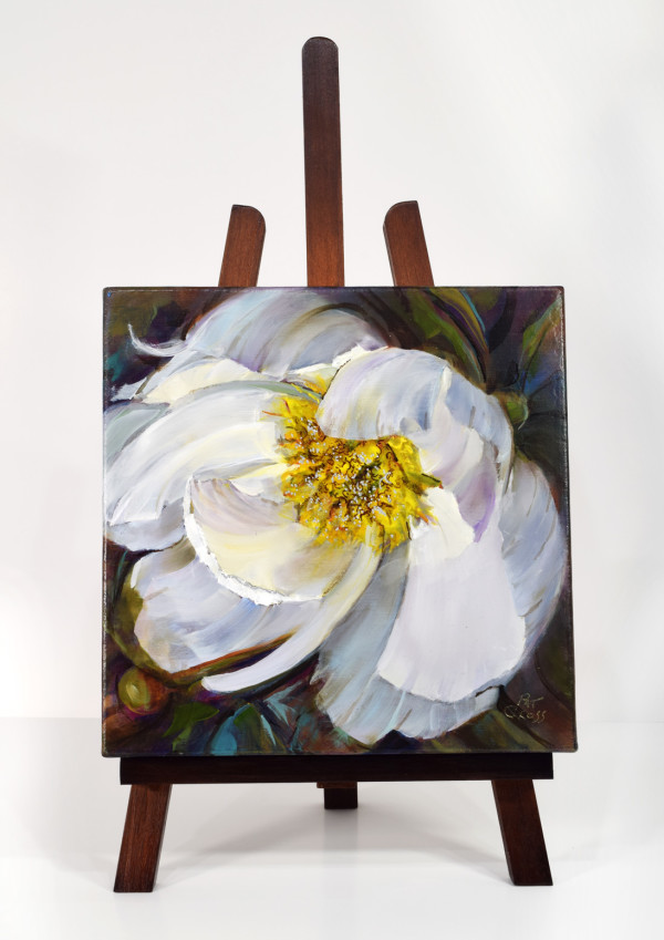 Peony White Delight by Pat Cross