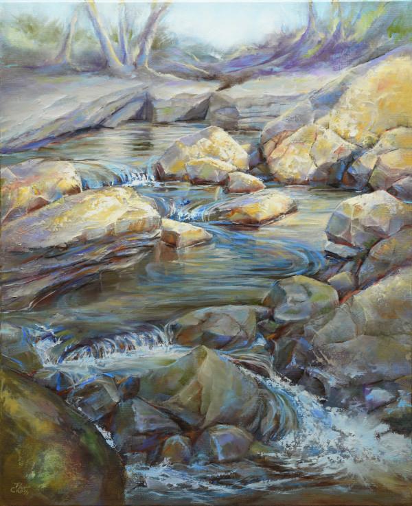 River Rock Garden by Pat Cross