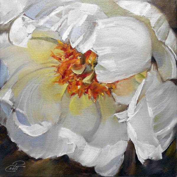 Spring Peony by Pat Cross