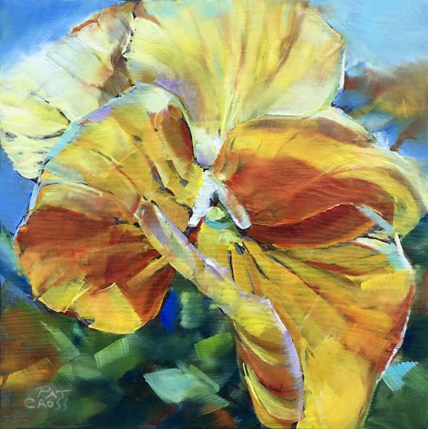 Sunny Petunia by Pat Cross