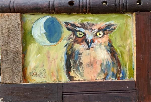 Owlie by Corinne Galla