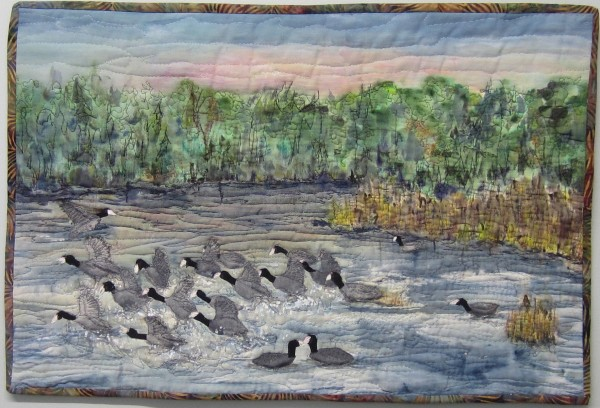 A Commotion of Coots by Cathy Drummond