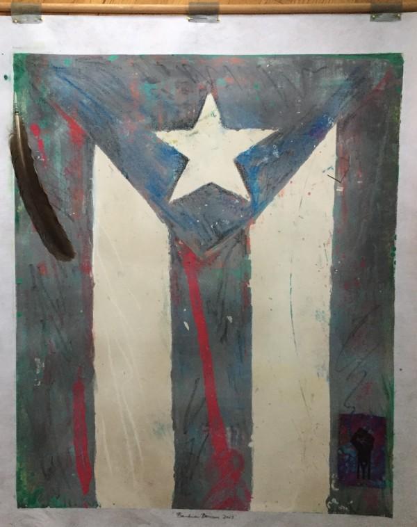Bandera Boricua en Luto by LZ Lerman
