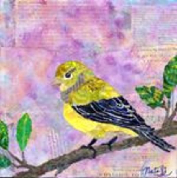 Backyard Birds: Mrs. Lesser Goldfinch by Natasha Papousek
