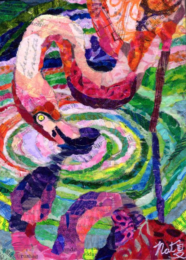 Flamingo Reflection by Natasha Papousek