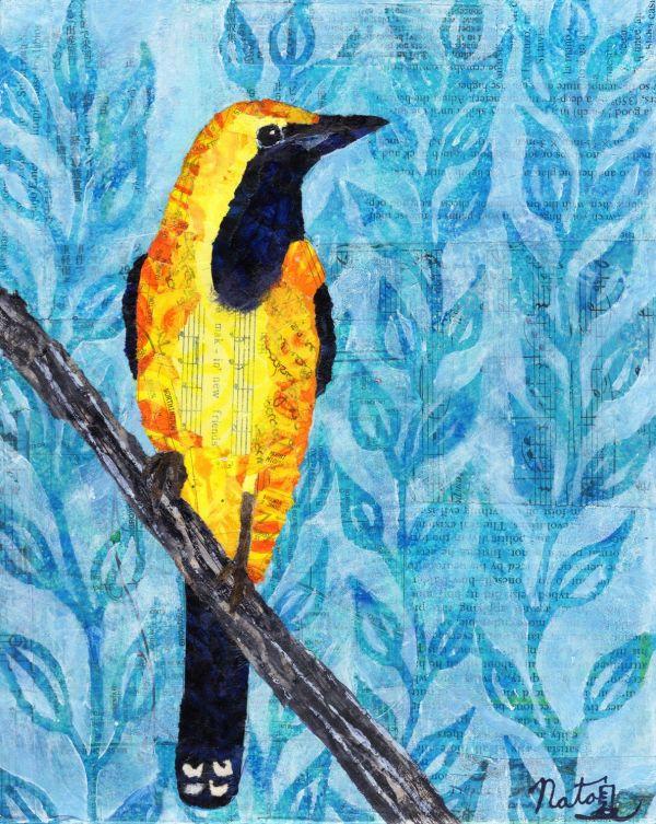 Backyard Birds: Mr. Hooded Oriole by Natasha Papousek