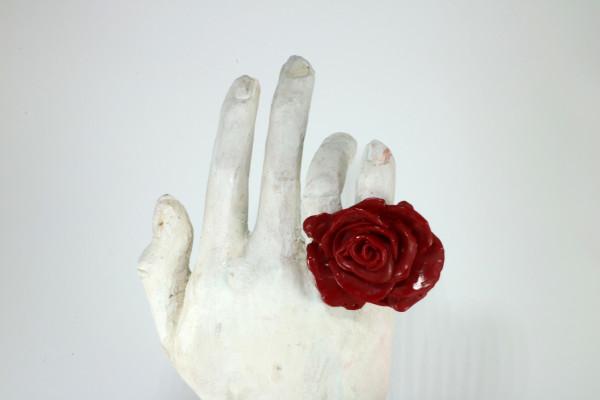 Rosa plástica by Ana Gabriela Rodriguez