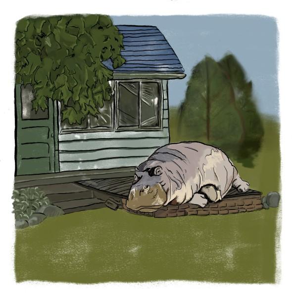 What if I had a hippo by matthew stitt