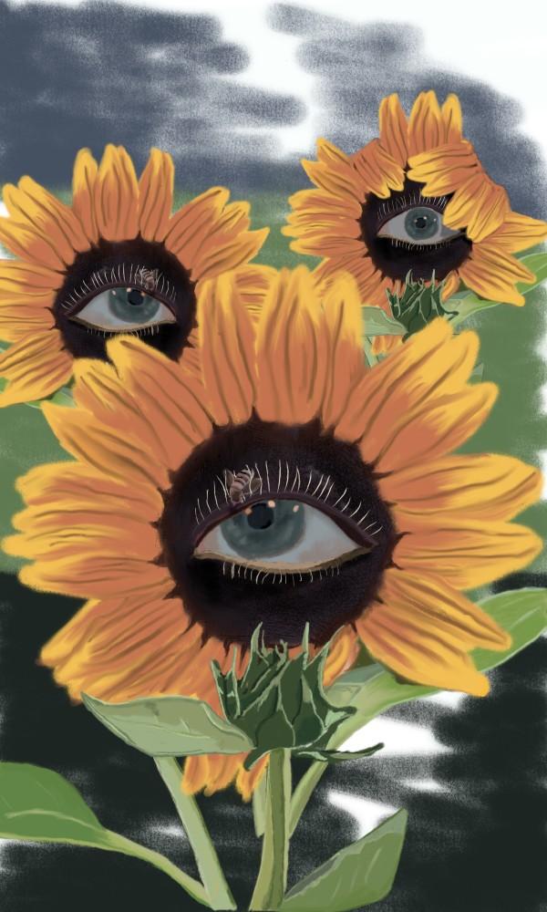 Sunflower 18 X 24 only by matthew stitt