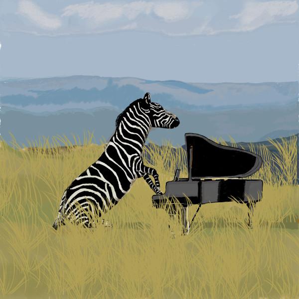 Zebra Pianist 18x24 only by matthew stitt