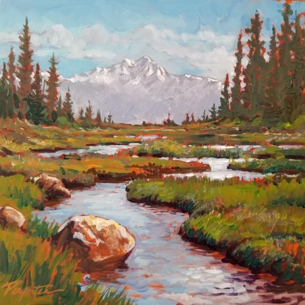 """Alpine - tarn stream #2"" by Jan Poynter"