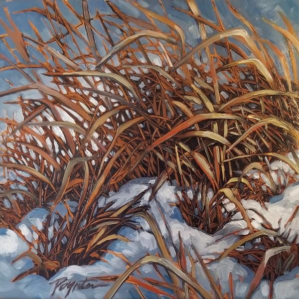 """""""Valley Grass #1 - Black"""" by Jan Poynter"""