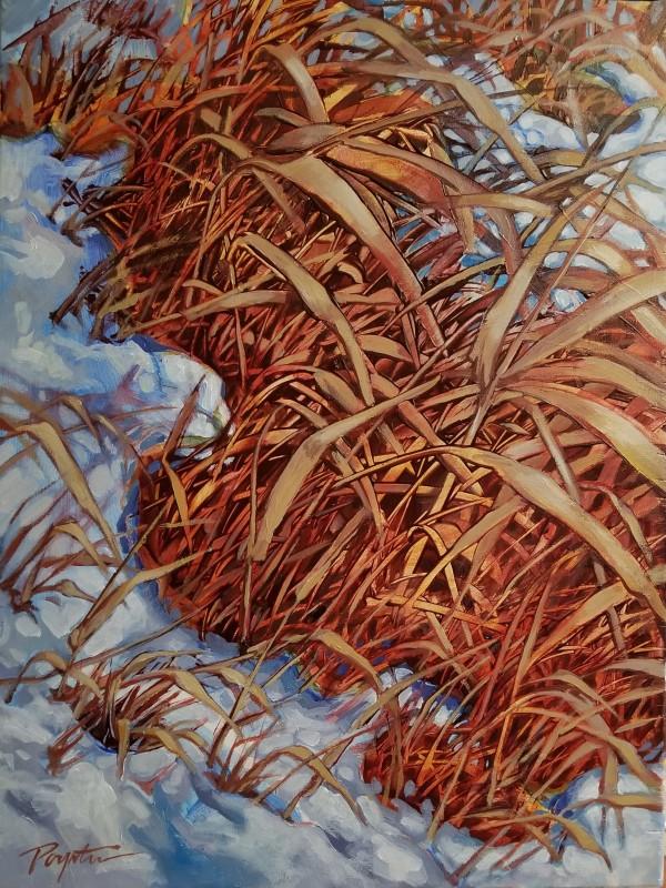 """""""Valley Grass #3"""" by Jan Poynter"""
