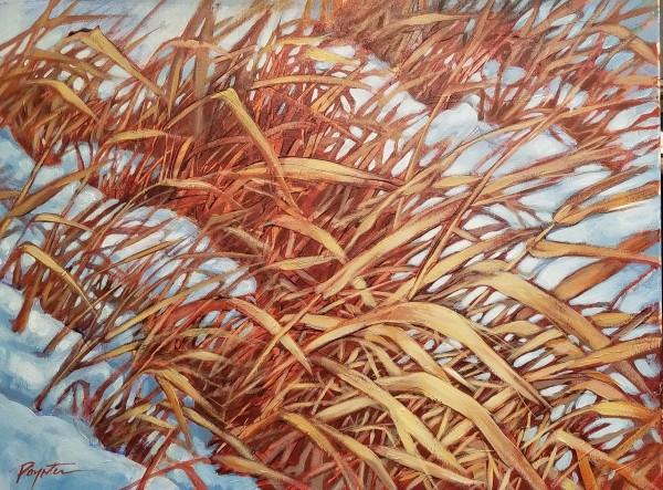 """""""Valley Grass #2"""" by Jan Poynter"""