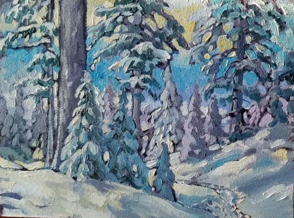 """Yellow Sky - Snowshoe trail"" by Jan Poynter"