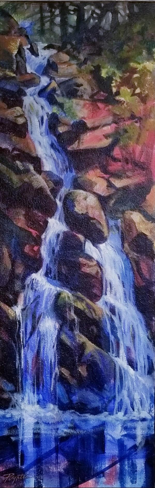 Waterfall series by Jan Poynter