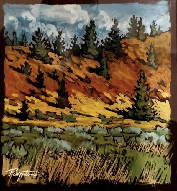 """First sage - valley change"" by Jan Poynter"