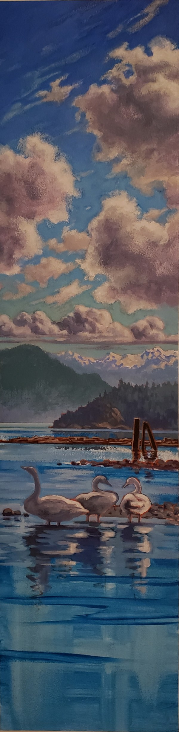 """"""" 3 swans - 3 clouds""""  West Howe Sound by Jan Poynter"""