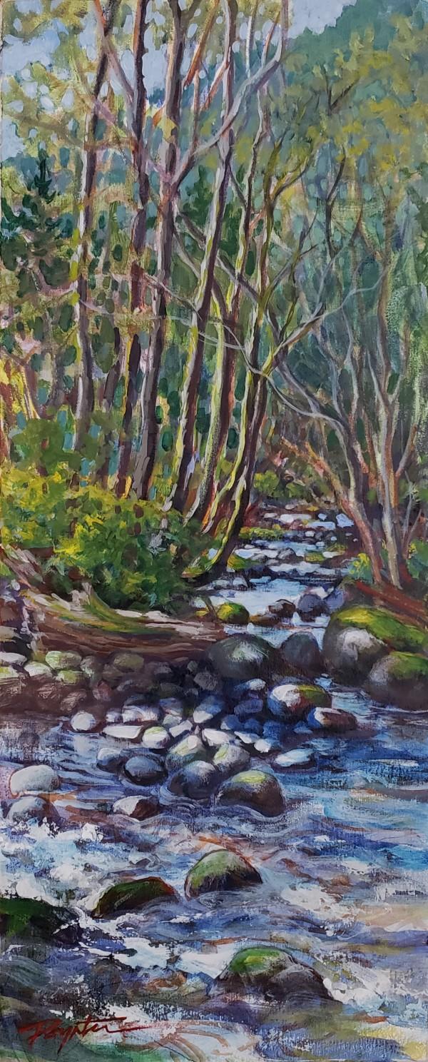"""Stone shadows - Spring creek"" by Jan Poynter"