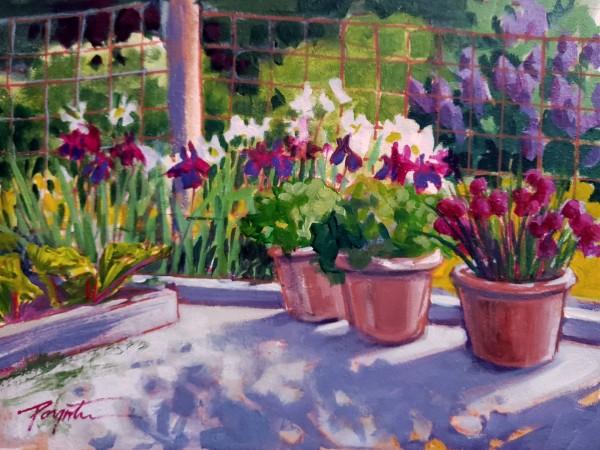 Garden Shadows - May by Jan Poynter