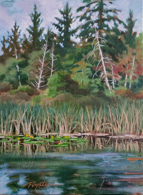 Pond, Grass, Trees - Sargeant Bay by Jan Poynter