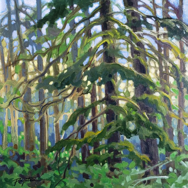 Forest study #1 by Jan Poynter