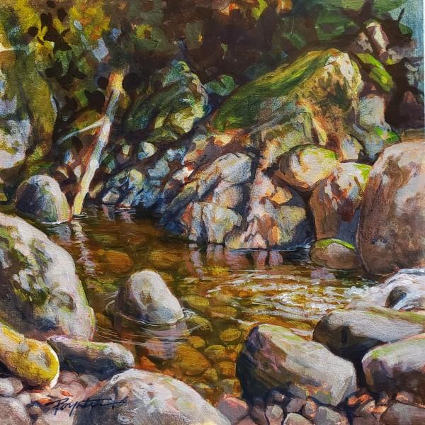 Grey Creek - Pool reflections by Jan Poynter