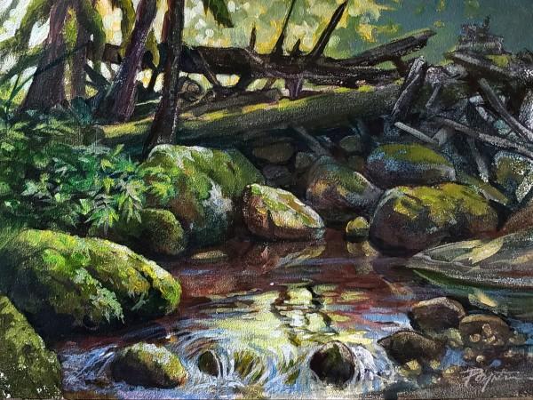 Log jam - reflections. Grey Creek by Jan Poynter