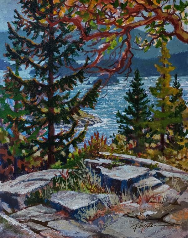 Rock shadows - island view by Jan Poynter