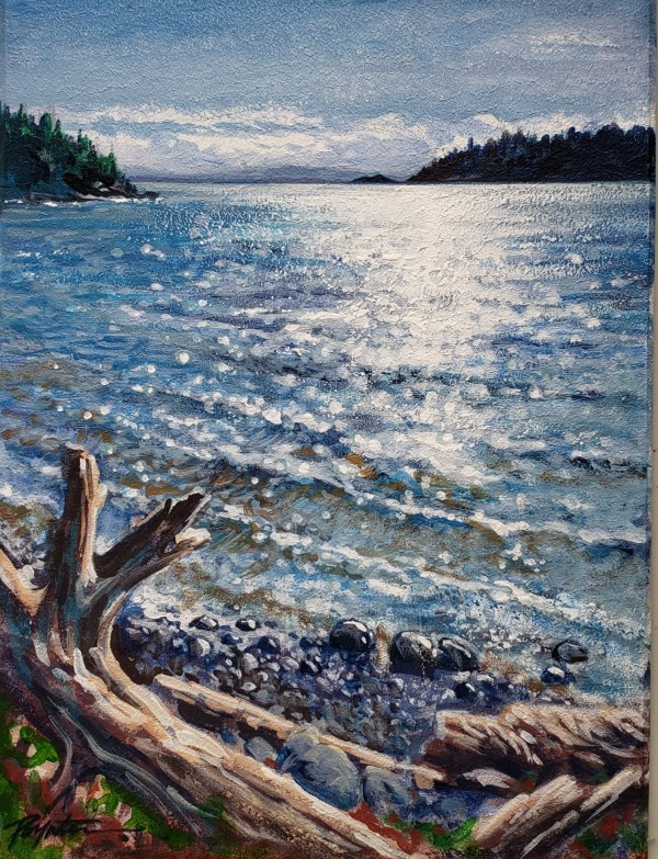 """Sparkling edge - McCourt Beach"" West Sechelt by Jan Poynter"