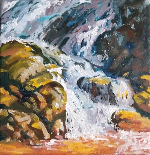 """Golden Falls - study"" by Jan Poynter"