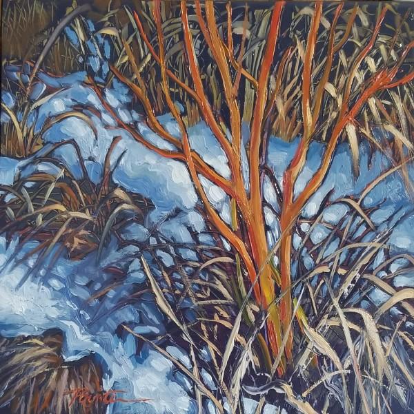 """""""Winterbranch Red #1"""" by Jan Poynter"""