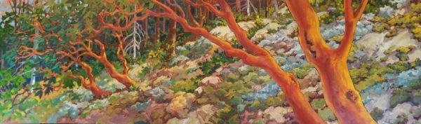 """Arbutus Moss - Cypress Mt #3"" by Jan Poynter"