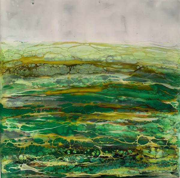 Ireland Landscape by Alane Holsteen