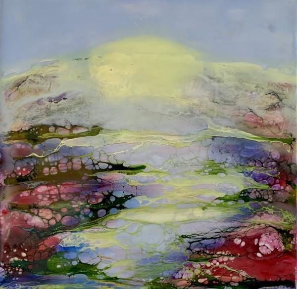 Sunrise by Alane Holsteen