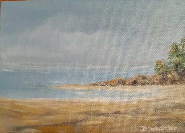 'Beach' by Bonnie Schnitter