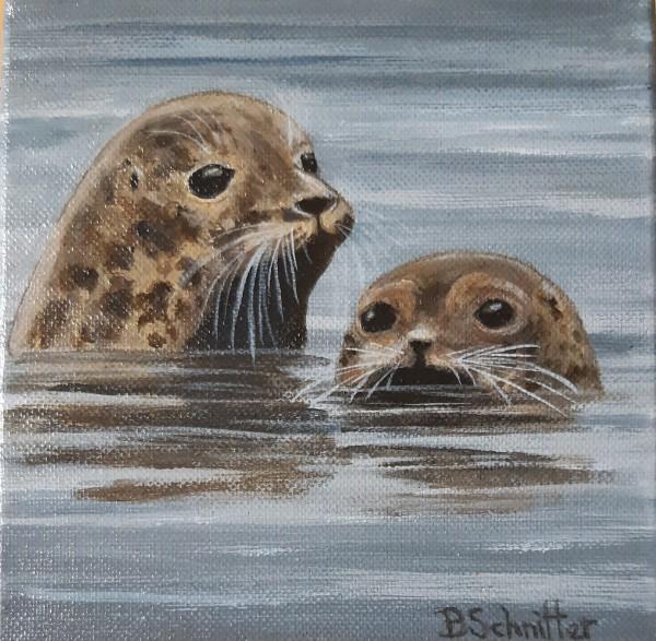 Seals by Bonnie Schnitter