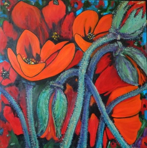 Poppies by Bonnie Schnitter