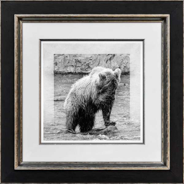 Katmai Baptism  Original: Young Grizzly Series by Jerry Locati