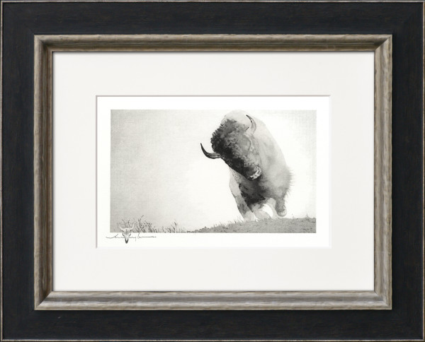 Bison Series by Jerry Locati