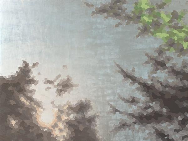 《阳光闪耀(珍珠)》,伊莱恩·库姆斯著