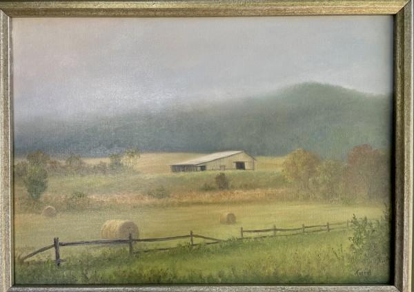 Mist Rising - Hidden Valley by Tarryl Gabel