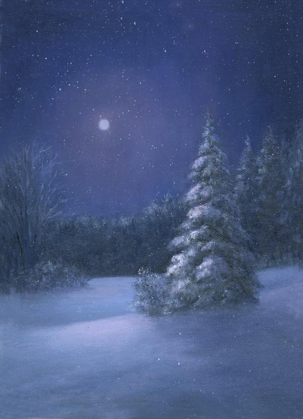 Full Moon, Falling Snow by Tarryl Gabel