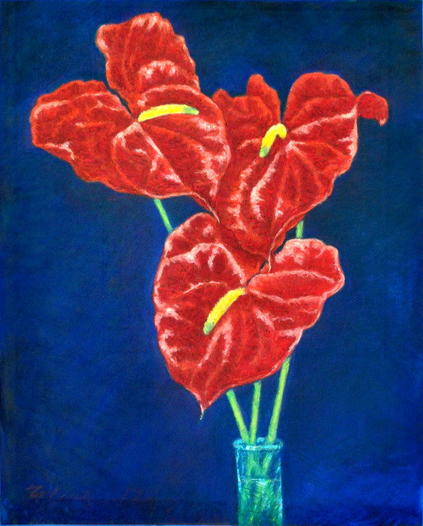 Three Red Antheriums by Merrilyn Duzy
