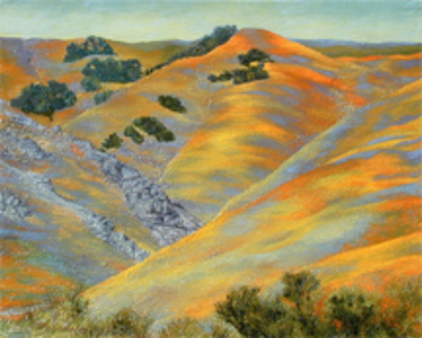 Gorman Series: Flowering Hills V by Merrilyn Duzy
