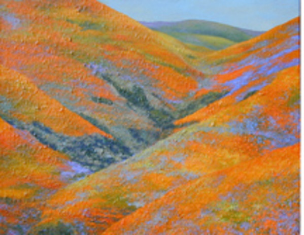 Gorman Series: Flowering Hills II by Merrilyn Duzy