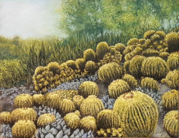 March of the Barrel Cacti by Merrilyn Duzy