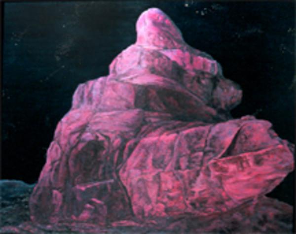 Night's Consort by Merrilyn Duzy
