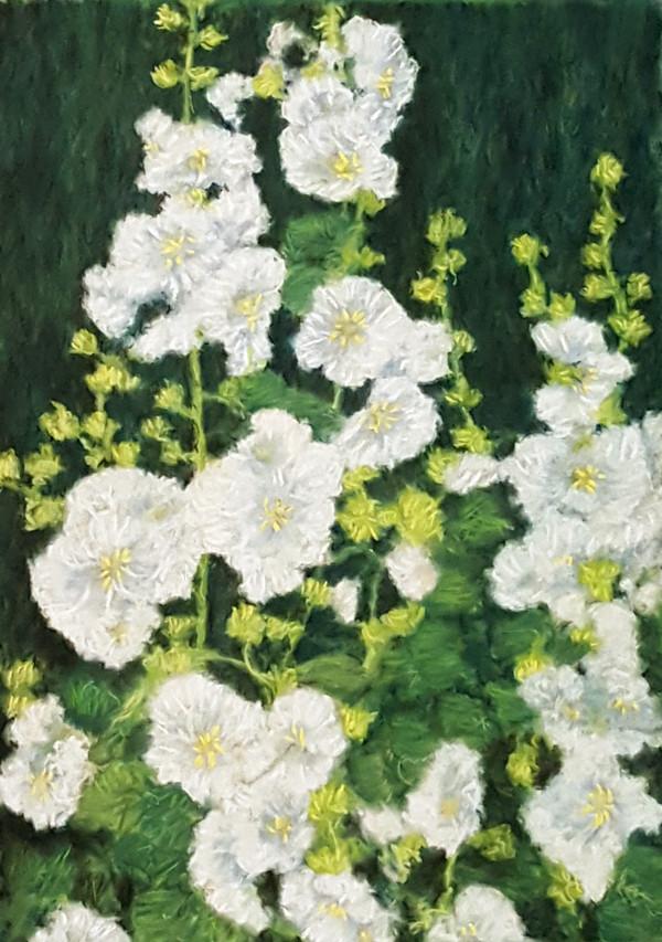 White Hollyhocks by Merrilyn Duzy